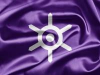 13003712-東京都の旗