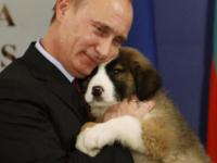 プーチンと犬