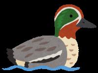 bird_kogamo